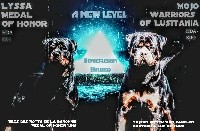 Rottweiler - Sovereign Breed
