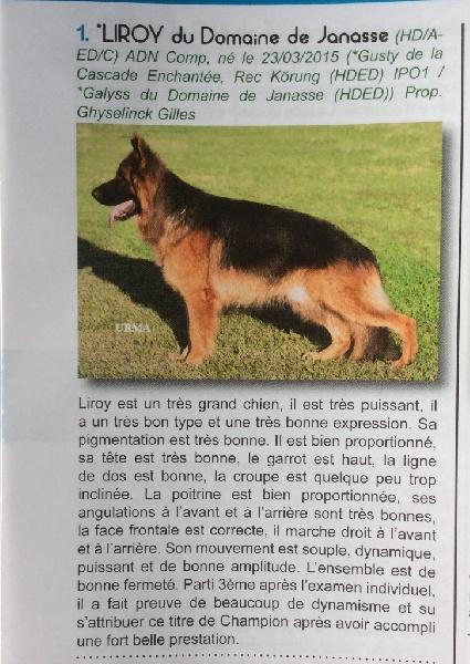 Publication : Du Domaine De Castel Odon  Auteur : Domaine de Castel Odon