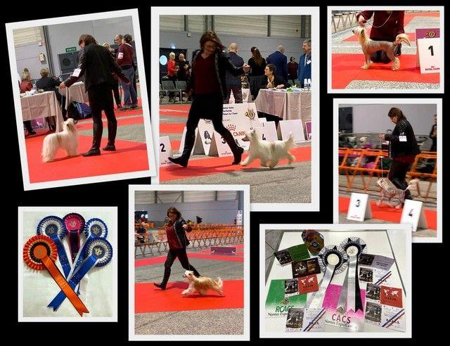 Little Champs - Expositions de Nantes