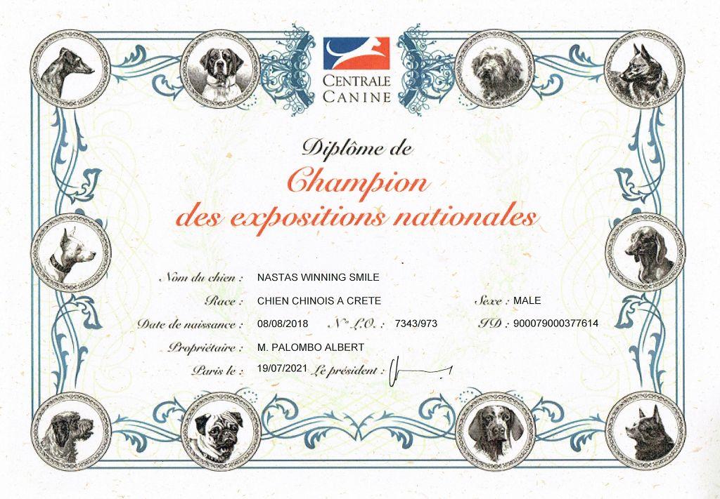 Little Champs - Nouveau Champion
