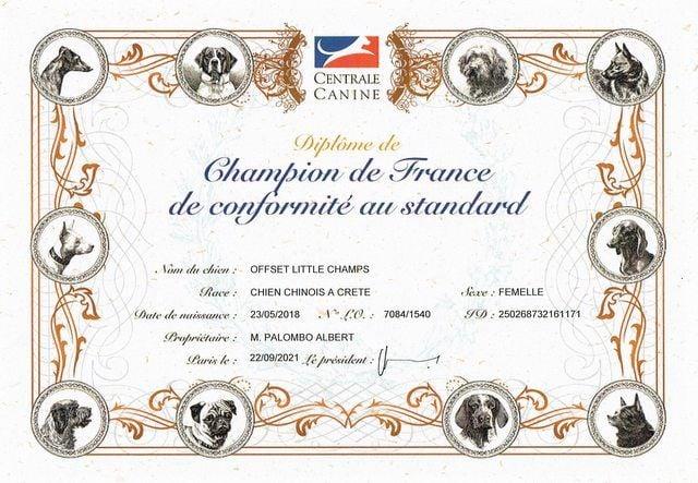 Little Champs - Championne de France