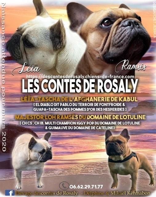 Des Contes De Rosaly - Naissances prévues pour mars 2020 (2)