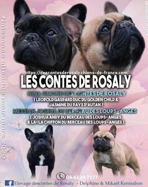 Des Contes De Rosaly - Naissances prévues pour mars 2020