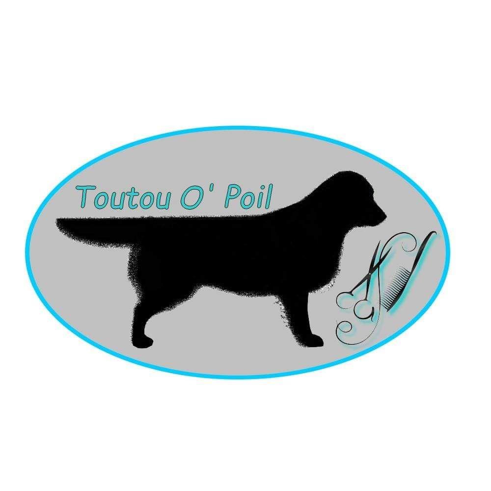 Photo Toutou O' Poil