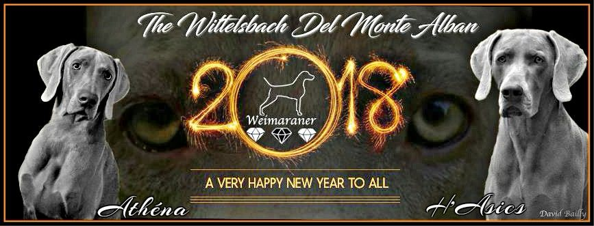 The Wittelsbach Del Monte Alban - HAPPY NEW YEAR 2018 ALL FRIENDS !!!!!