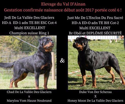 Elevage De La Vallée Du Val D'Ainan