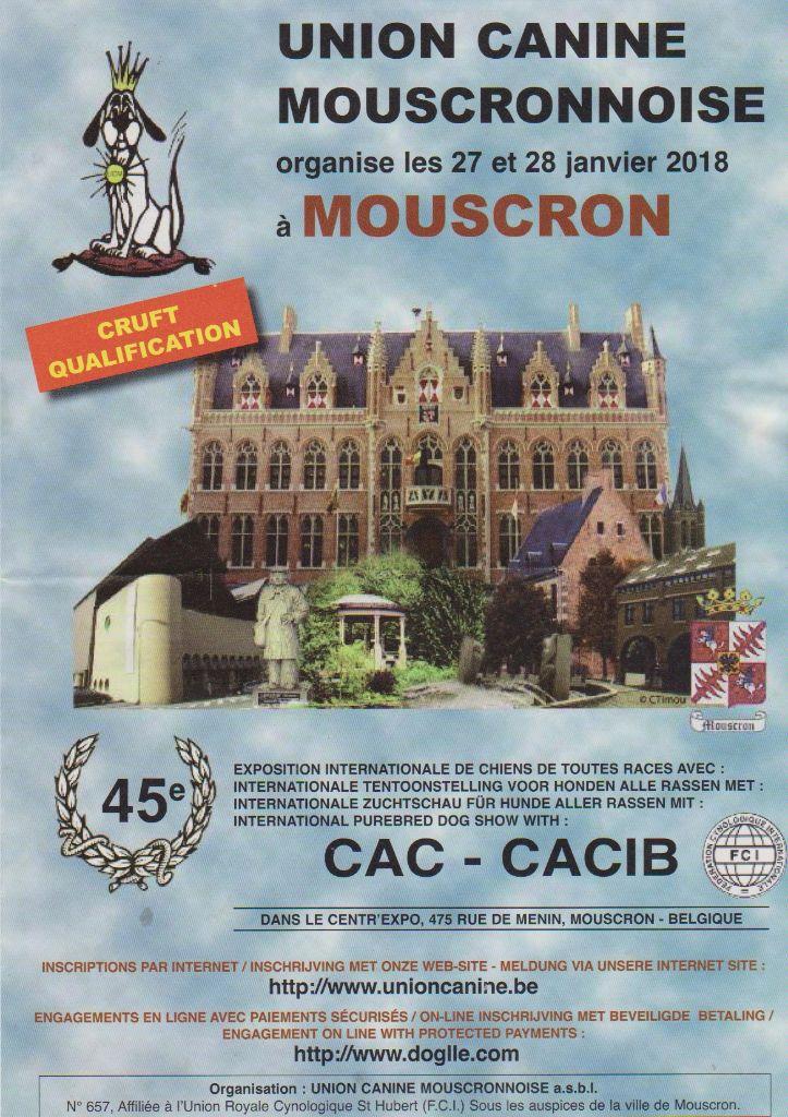 Du Domaine De La Poudrière - Union Canine Mouscronnoise 27/01/2017
