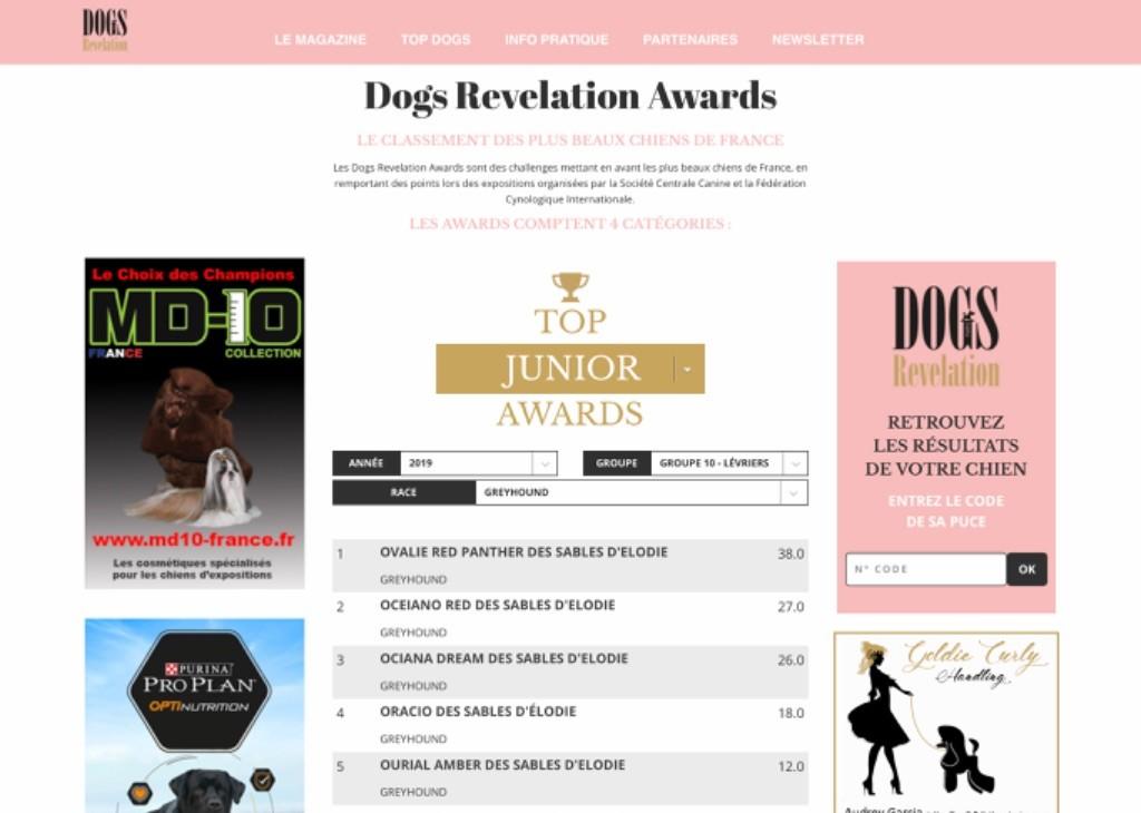 Des Terres De Moïra - Ovalie 1ère au Top DOG RÉVÉLATION JEUNE  2019