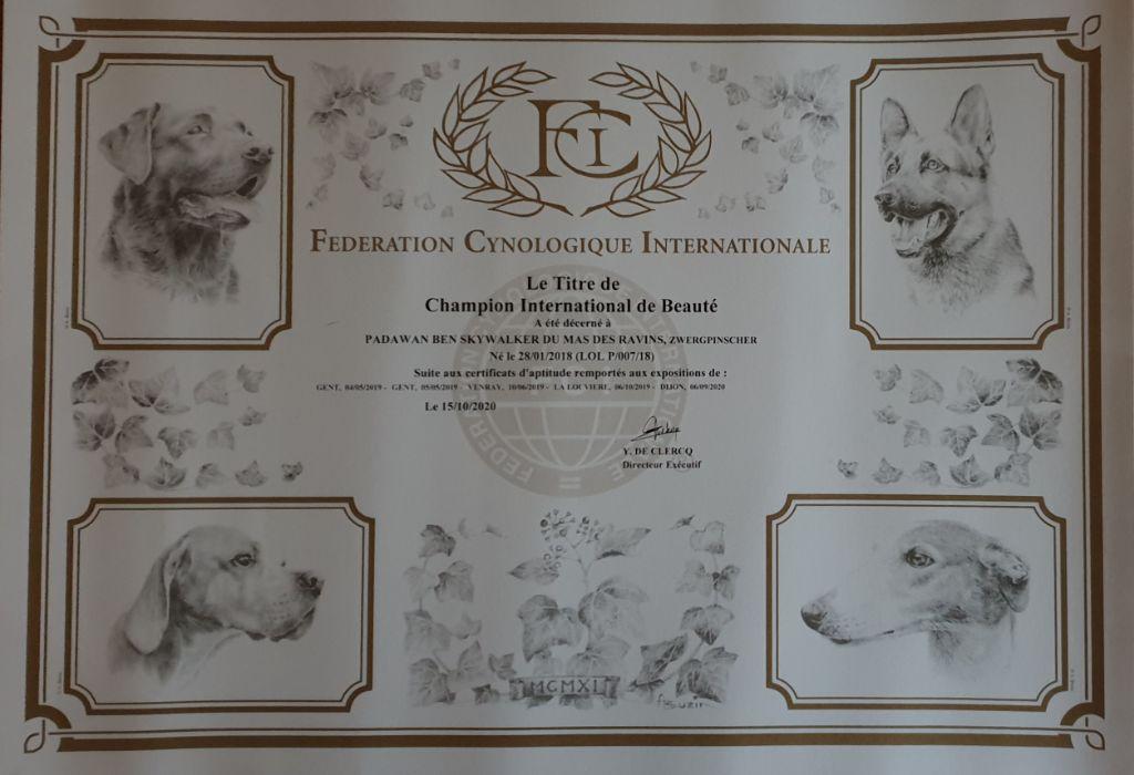 Du Mas Des Ravins - Champion International
