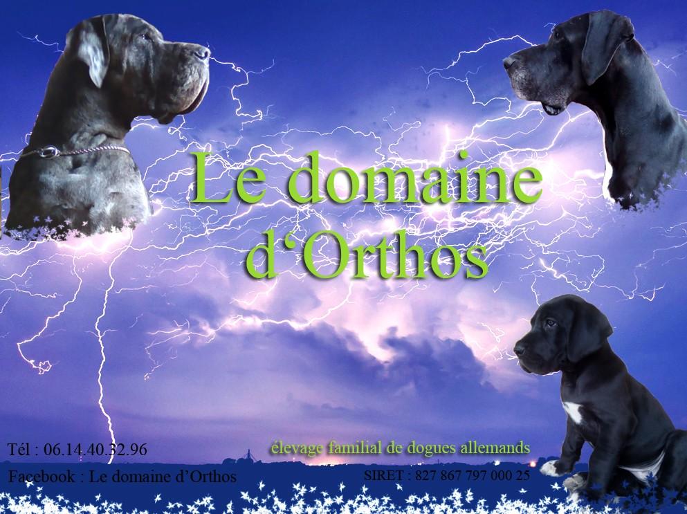 Du Domaine D'Orthos