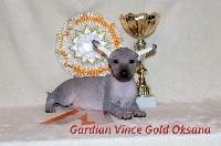 gardian vince gold Oksana