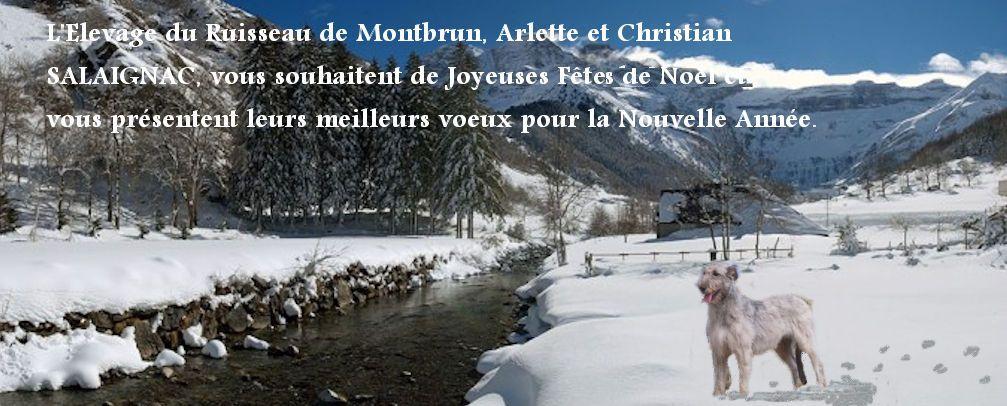 du ruisseau de Montbrun - Joyeuses Fêtes et Meilleurs Voeux