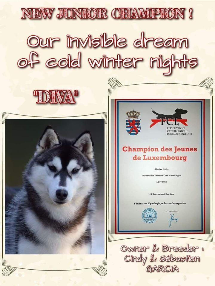 Of cold winter nights - Jeune championne du Luxembourg