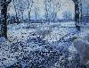 - Les podhales et l'hiver ..