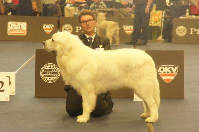 des Arcanes D'Hermes - Championnat du Monde 2012