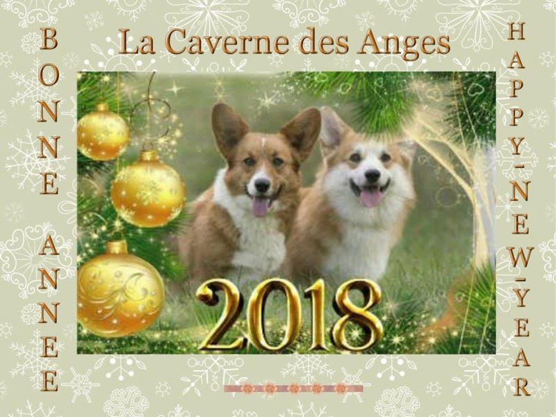 La caverne des anges - Bonne Année 2018