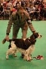 - CRUFTS 2013 ... What a day !