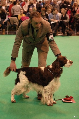 du Clos d'Appé - CRUFTS 2013 ... What a day !