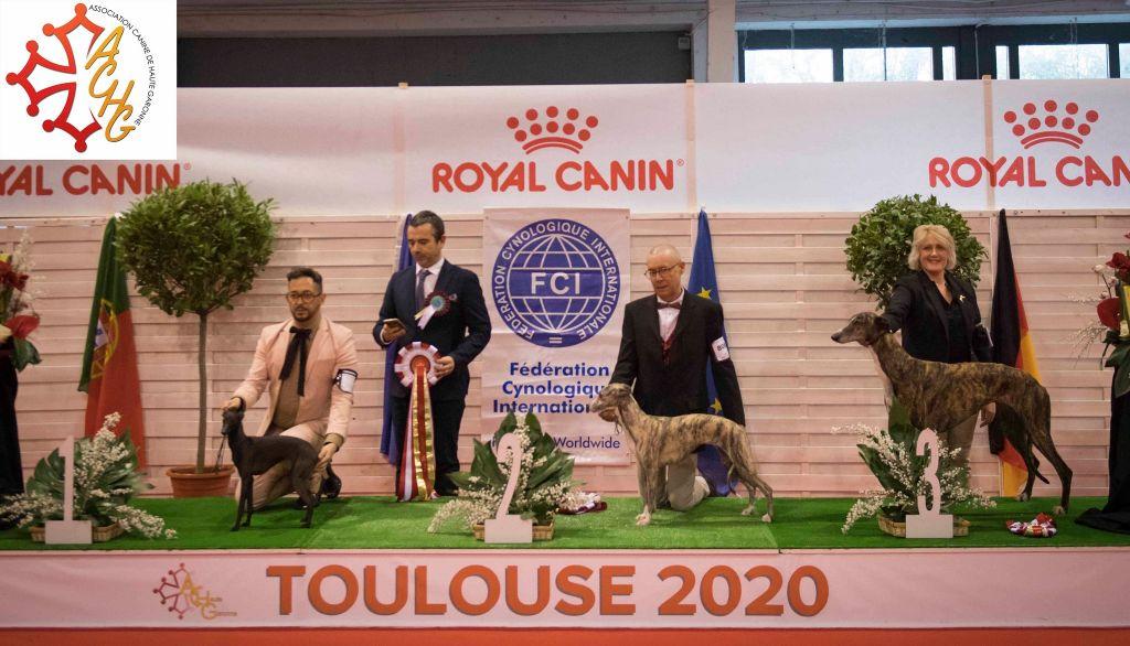 des Carmauries - Exposition internationale de Toulouse