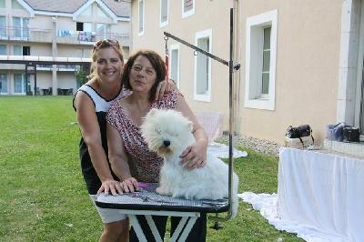 du vallon des Aures - European Dog Show - Genève 2013
