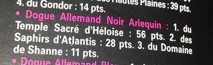 des saphirs d'atlantis -  2 EME  MEILLEUR ELEVAGE DE FRANCE  !!!!