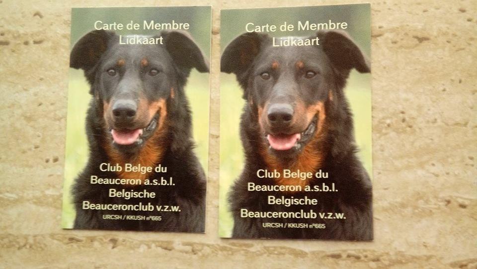 de La Cité des Comtes - Club de Race Belge