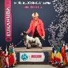 - EUROPEAN DOG SHOW 2016 - Brussels (B)