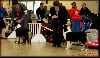- Première expo de l'année : Paris Dog Show