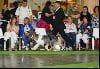 - World Dog Show