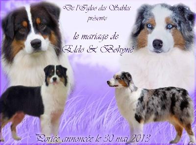 de L'Igloo des Sables - Naissances prevue le 30 mai 13 de bohyné et de eldorado