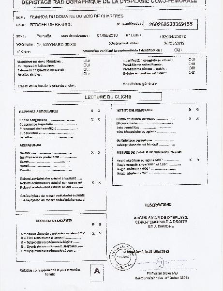 CH. Feïnhoa du domaine du Bois de Chartres
