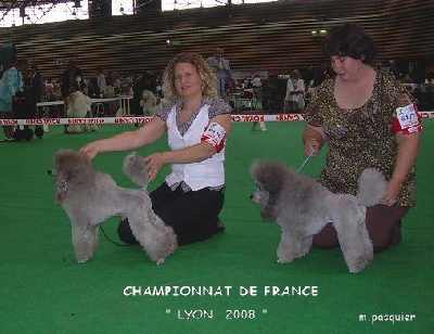 Del rey rakashi - CHAMPONNAT DE FANCE 2008