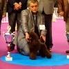 CH. Givenchy irresistible Del rey rakashi