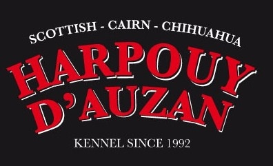 du Harpouy D'Auzan