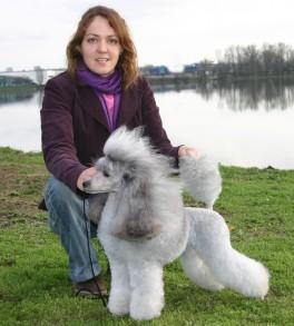 Publication : The beautiful grey of marysa  Auteur : Marie M. - BGOM