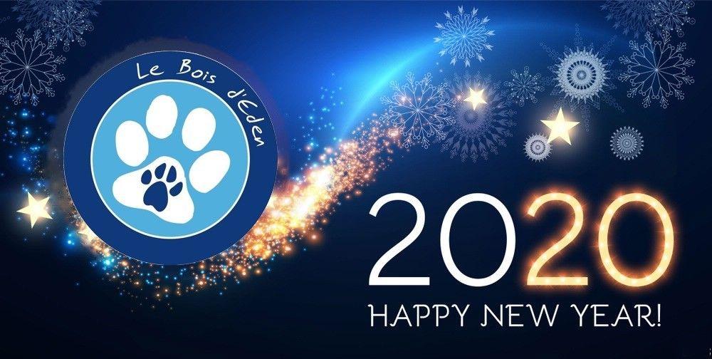 du Bois d'Eden - Bonne année 2020 !!!