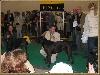 - World Dog Show 2006  - Poznan