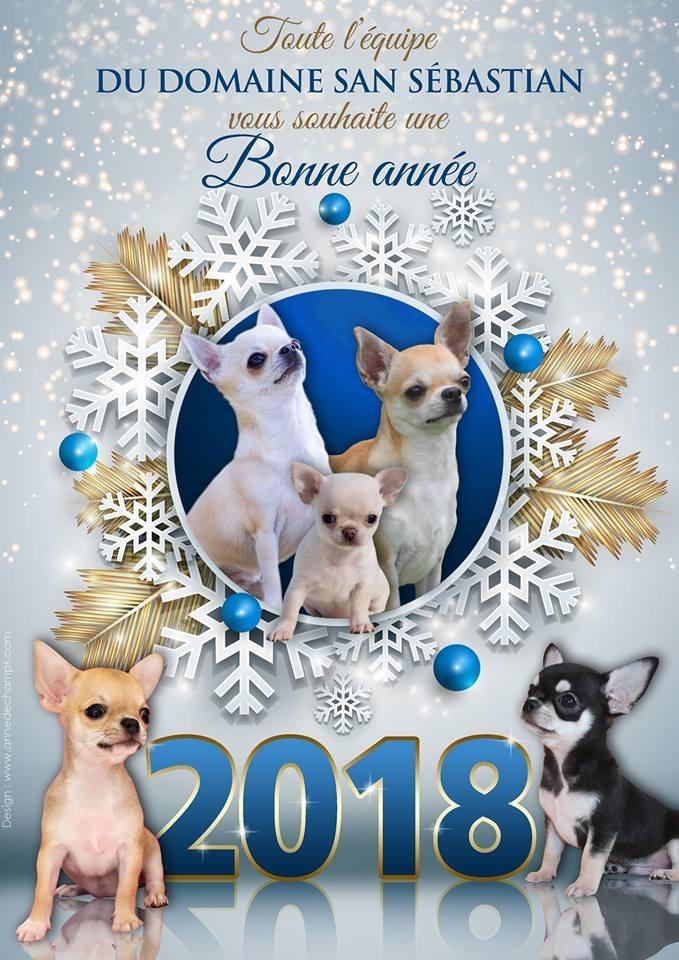 du Domaine San Sébastian - Bonne et Heureuse Année 2018