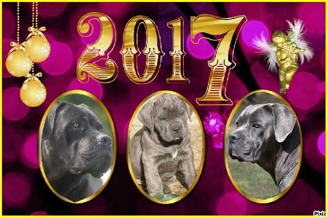 des Gardiens des Murailles - Tous mes voeux pour 2017 !!