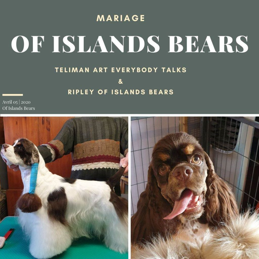 of Islands Bears - Mariage pluricolor