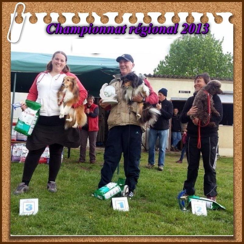 Chien - Elevage du Clan Castelau - eleveur de chiens
