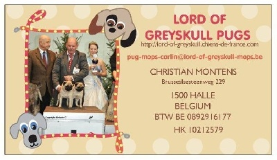 Lord of Greyskull