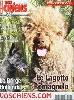 - Vos Chiens Magazine Sepoembre 2013 n° 317