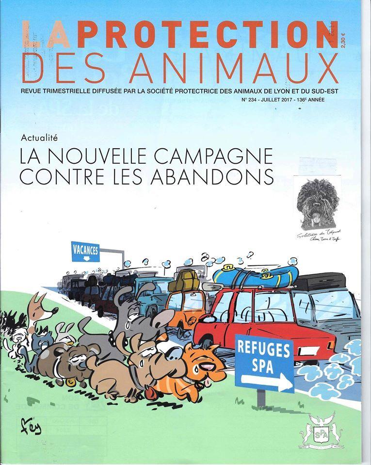 Golatière du Trépont - STOP A L'ABANDON !