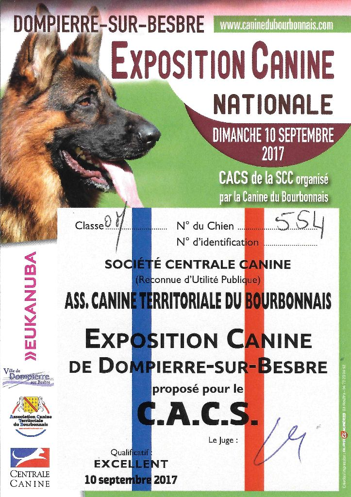 centrale canine 47