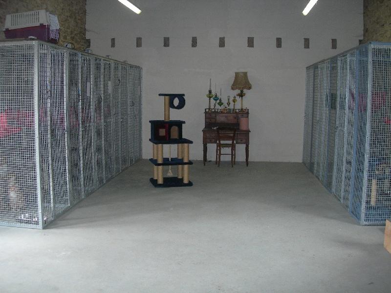 Accueil elevage de la paix retrouvee eleveur de chiens for La paix interieur