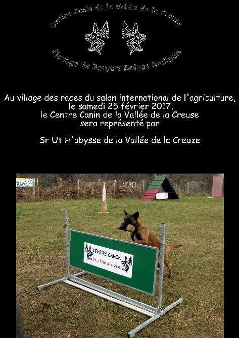 de la vallée de la Creuse - Village des races du salon international de l'agriculture 2017