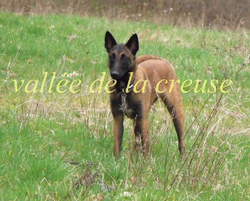 Sr ut h'abysse de la vallée de la Creuse