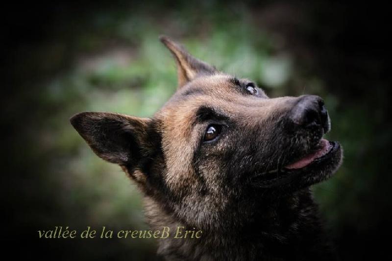 Chapka de la vallée de la Creuse