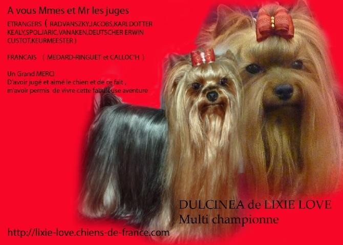 de Lixie Love - DULCINEA DE LIXIE LOVE